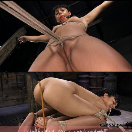 Exotic Newbie Gets Tied and Tormented at the Hands of The Pope | HD 720p | Release Year: May 24 2018