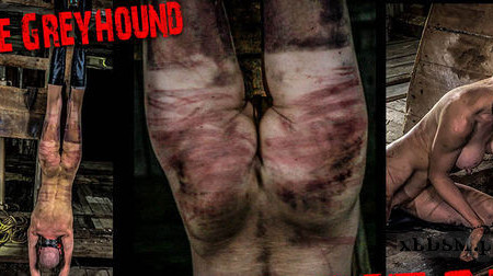 Hanging Meat – Slave Greyhound | Full HD 1080p | Release Year: Nov 10, 2019