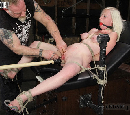 Stripped, Shaved and Bound - Tegan Riley