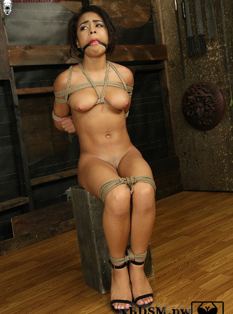 Society SM - My Little Bondage Toy - Nicole Bexley