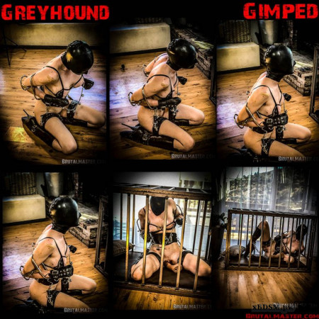 BrutalMaster - Rachel Greyhound | 30 April 2020