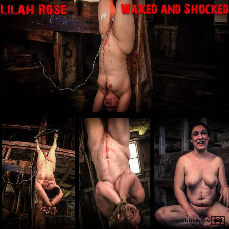 BrutalMaster - Lilah Rose | 1 June 2020