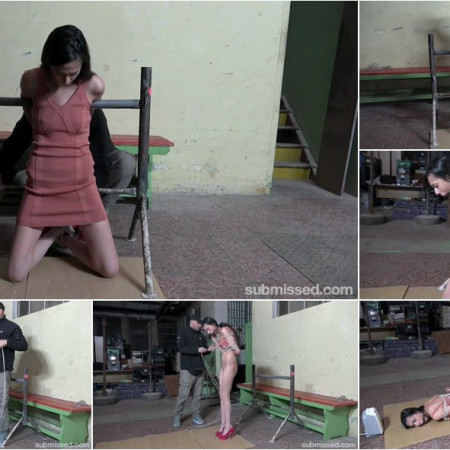 Ashley Ocean - ALONE, STARTLED AND HOGTIED [HD 720p]