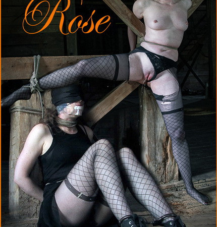 Hardtied - The Barn Rose - Anna Rose